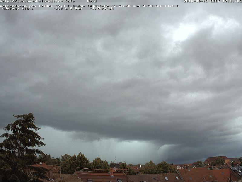 Mannheim-Wetter.info :: blog